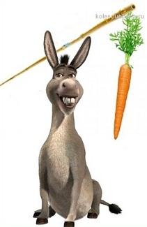 Поговорим о морковке
